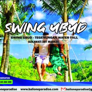 jungle swing ubud