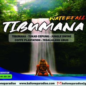 tibumana waterfall and jungle tour