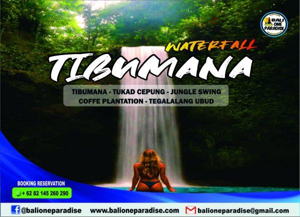 tibumana waterfall and jungle tour